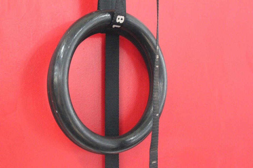 Gymnastic Ring Considerations 11 Or 125 Plastic Or Wood Texture